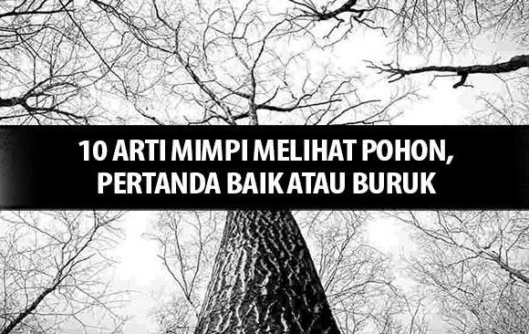 10-Arti-Mimpi-Melihat-Pohon,-Pertanda-baik-atau-buruk