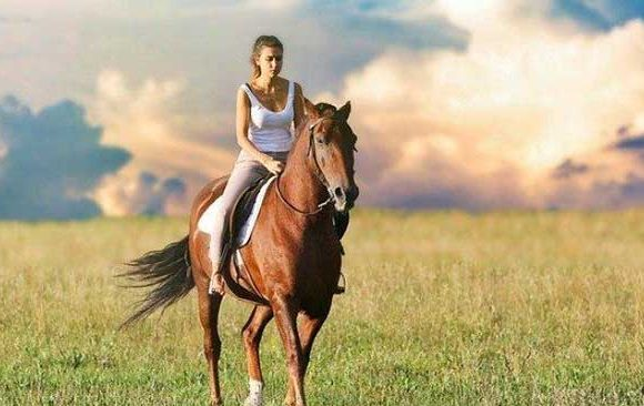 Mimpi-Menaiki-Kuda-Coklat
